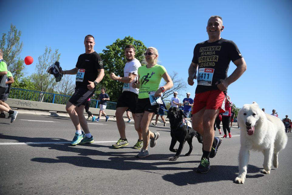 Weer geslaagd: The Big Run – Hardlopen voor Hulphond Nederland